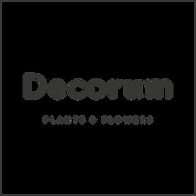 Decorum woordmerk in kader - grey - RGB.png