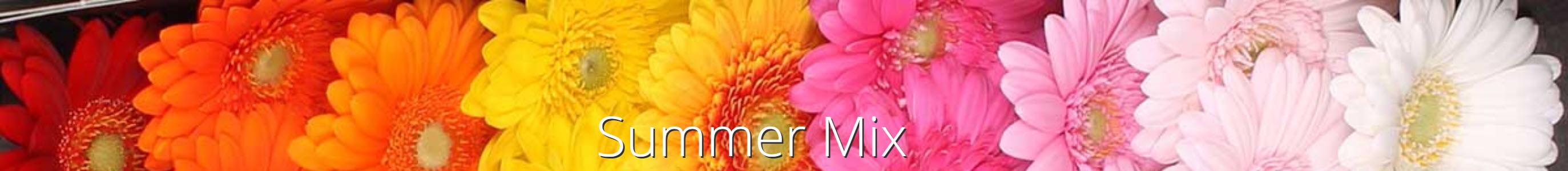 summermix jacoudijk
