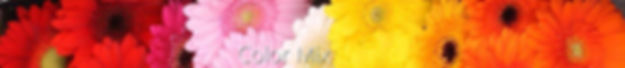 color mix.jpg