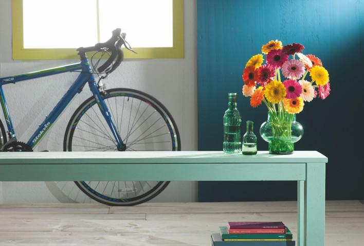 foto fiets decorum page.jpg