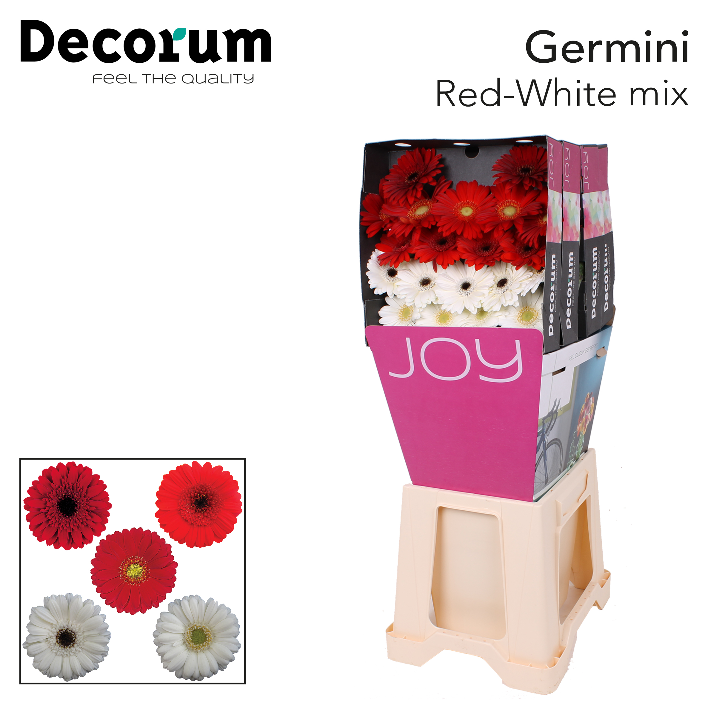 6. Red-White Mix