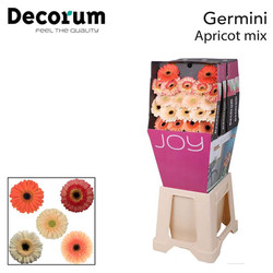 8. Apricot Mix
