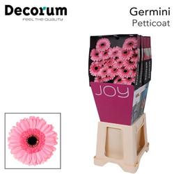 40. Petticoat-Dia-roze-zwartoog