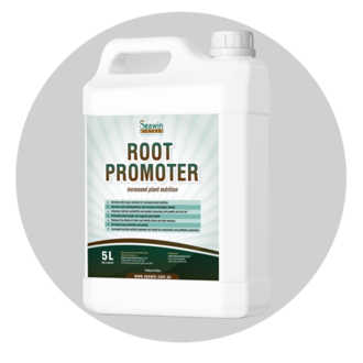 root promoter.png