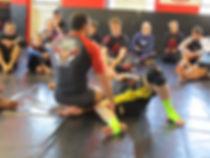 Adpative Martial Arts Seminars