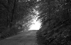 chemin-sous-la-lueur-su-soleil-au-milieu-d-une-for%C3%AAt_edited.jpg