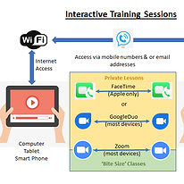 Interactive Training.png