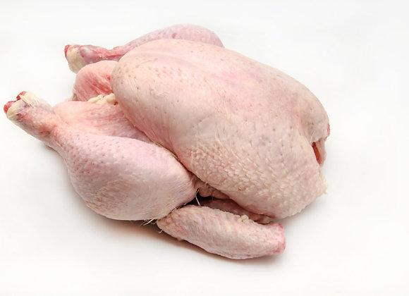 Non-GMO/Free Range Poultry