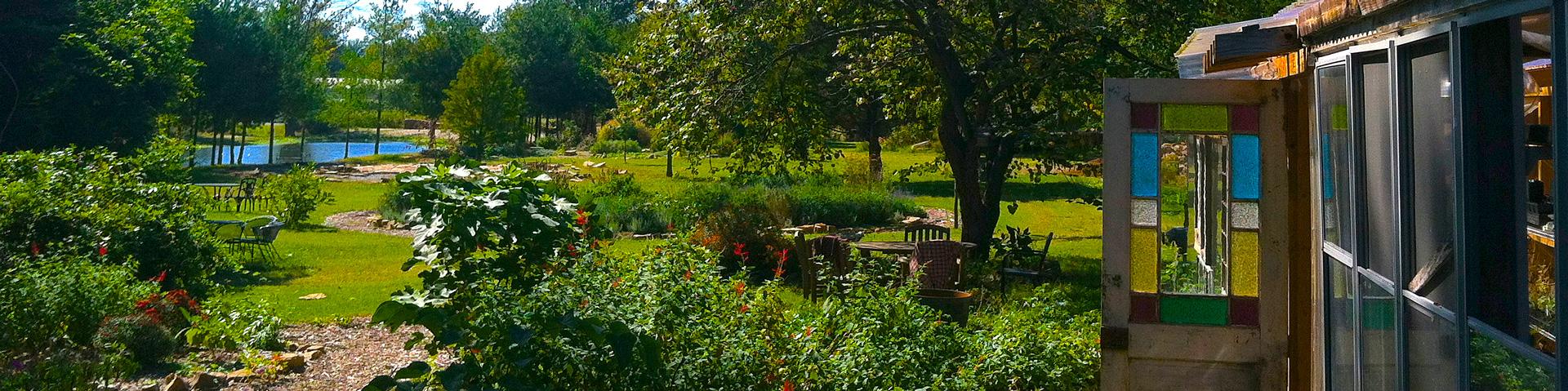 garden_IMG_2776.jpg