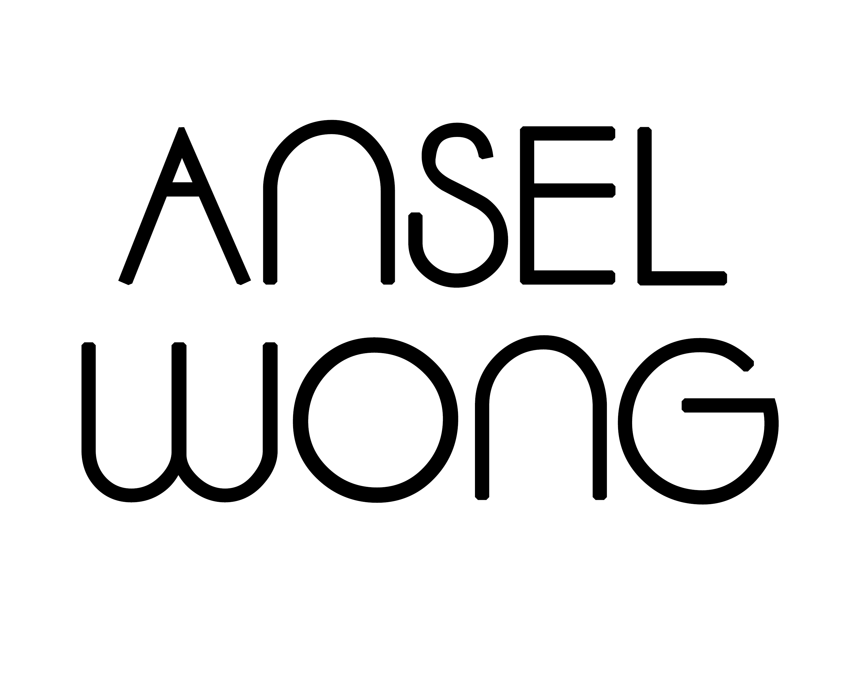 SUPPORT - ANSEL WONG