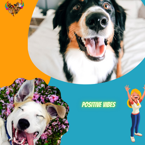 Bioresonanz - Wellness und Unterstützung für Dein Tier - 4