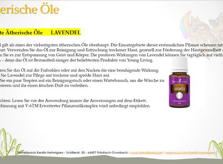 Beliebte ätherische Öle - Lavendel
