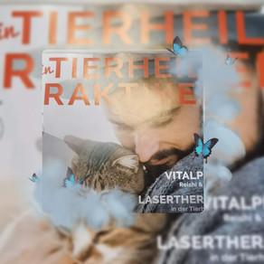 Laser Akupunktur in der Tierheilpraxis