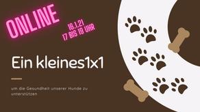 Erstes Online Event im Jahr 2021 - kleines 1x1 zur Gesunderhaltung unserer Hunde