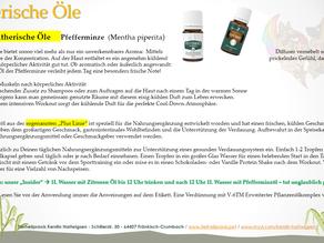 Beliebte ätherische Öle - Pfefferminze
