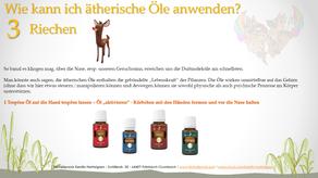 Anwendungsmöglichkeiten der ätherischen Öle --> #3