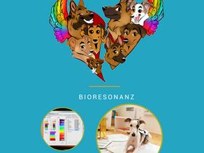 Bioresonanz - Wellness für Dein Tier - 3