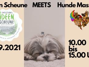 Ideen Scheune Brensbach meets Massage für Hunde