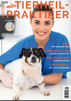 Fallbericht von mir im Magazin der Tierheilpraktiker