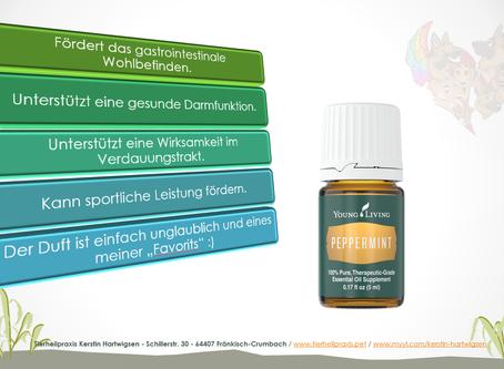Pfefferminze - Peppermint
