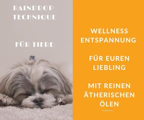 Raindrop Massage für Tiere