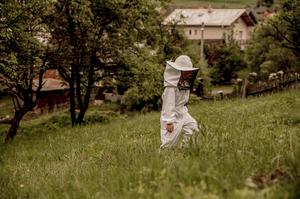 Autor: Tatina Gernátová Abelovo