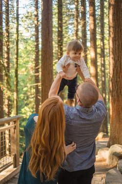 family hoyt arboretum redwood deck