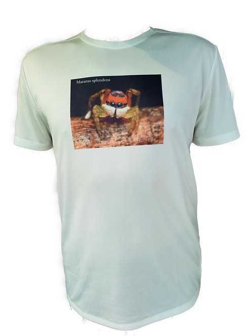 Maratus splendens Tee Shirt