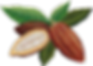 לוגו קקאו טבעי