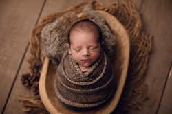 Baby forest theme