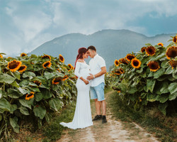 Sunflower maternity photos