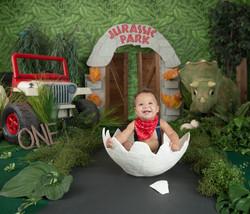 Jurassic park themed birthday