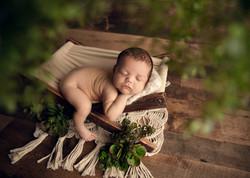 Hammock newborn prop