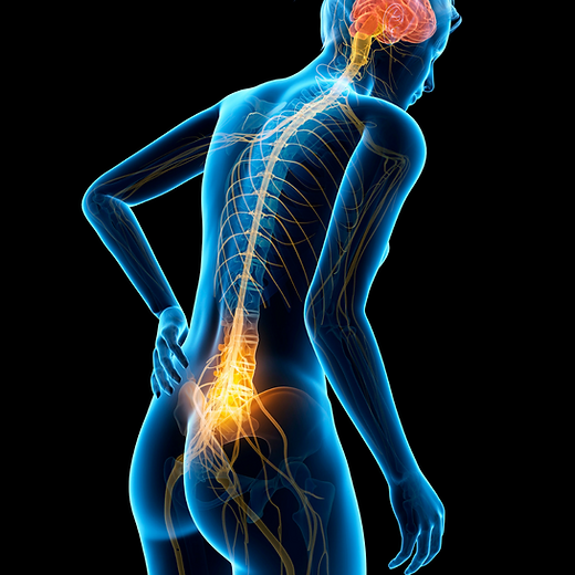 Spinal TMA Photos  (1).png