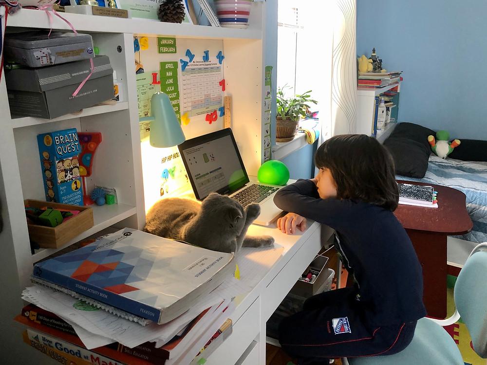 Дистанційне навчання в Нью-Йорку