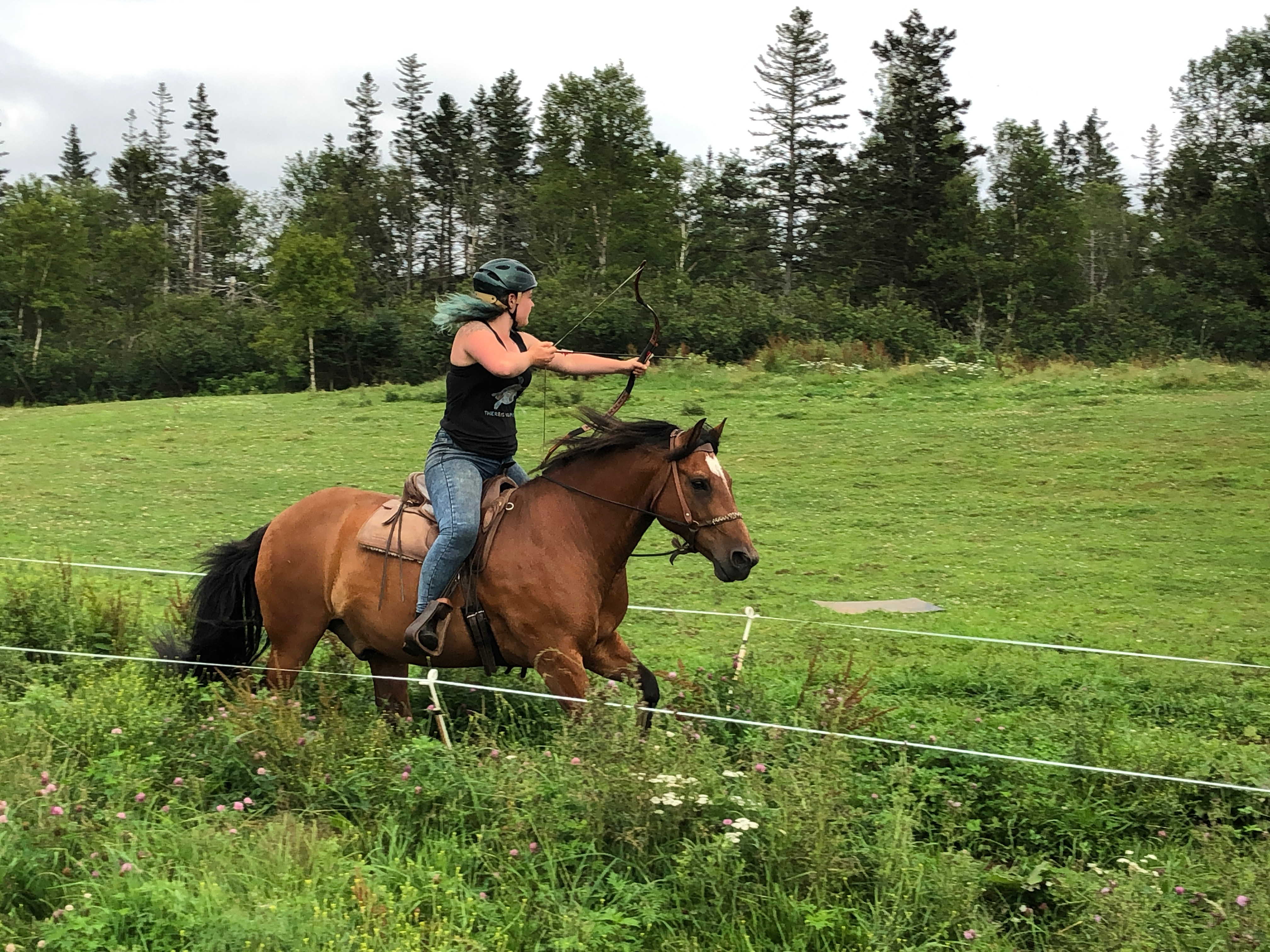 Weekly Mounted Archery Classes