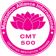 CMT-500-2.png
