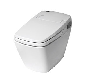 iBD-747S All-in-one Toilet Bidet
