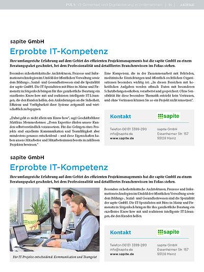 PULS-sapite_2020_halbe_Seite.jpg