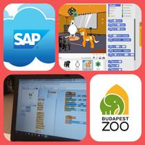 0. nap SAP Állatkerti Kódolás