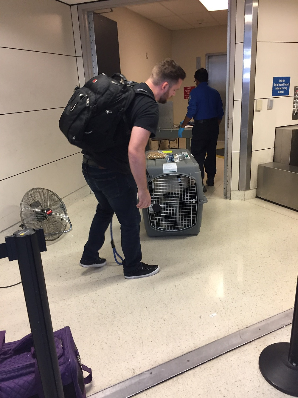 Flying pets to Costa Rica