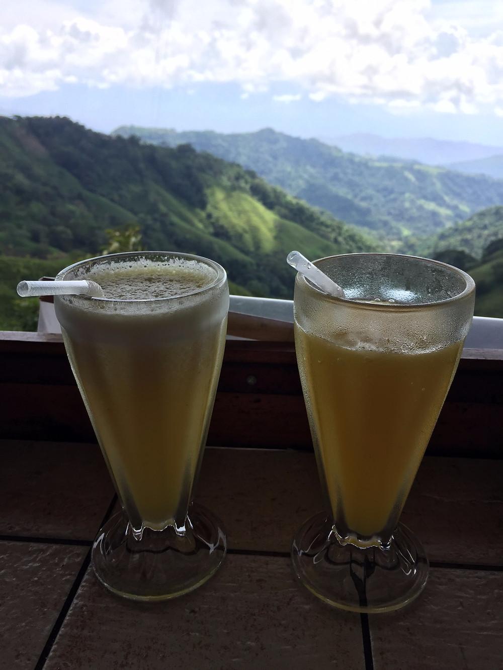 Costa Rica mango batidos