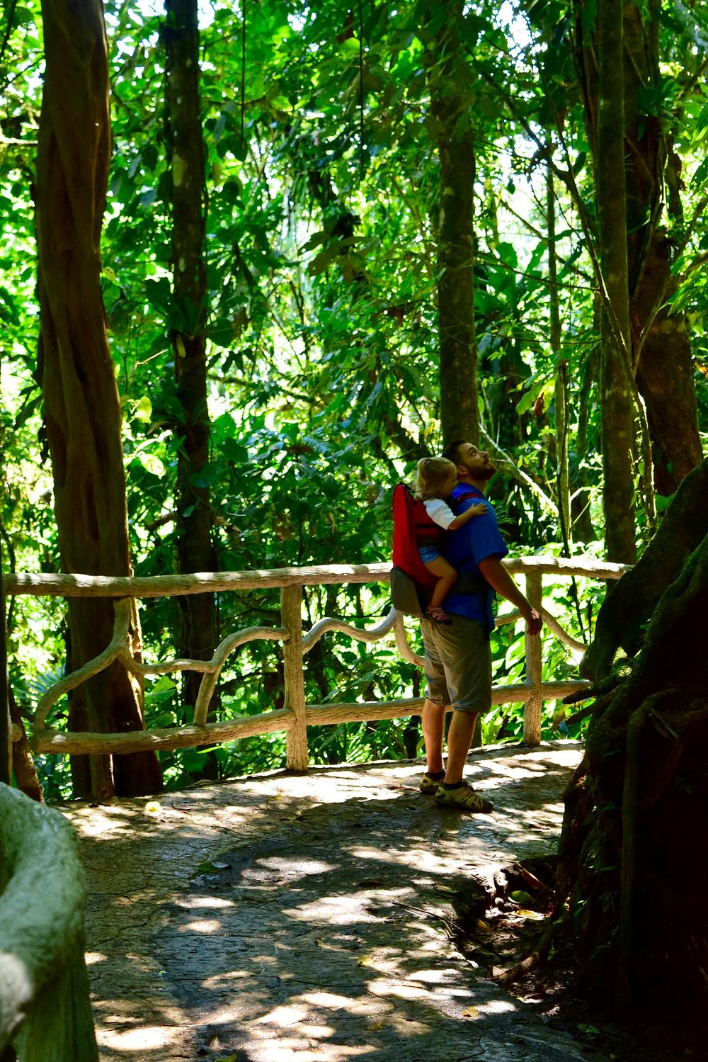 Mistico Hanging bridges Arenal Costa Rica