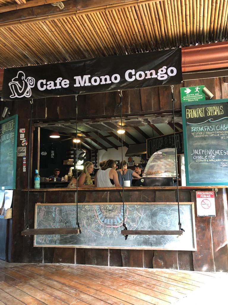 cafe mono congo costa rica