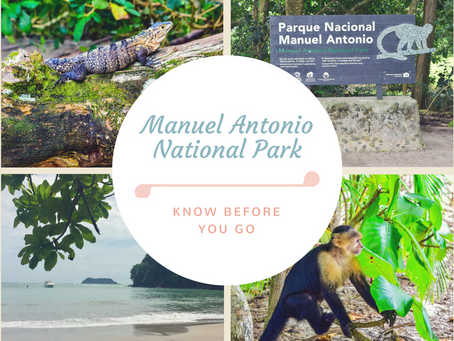 Manuel Antonio National Park: Know before you go