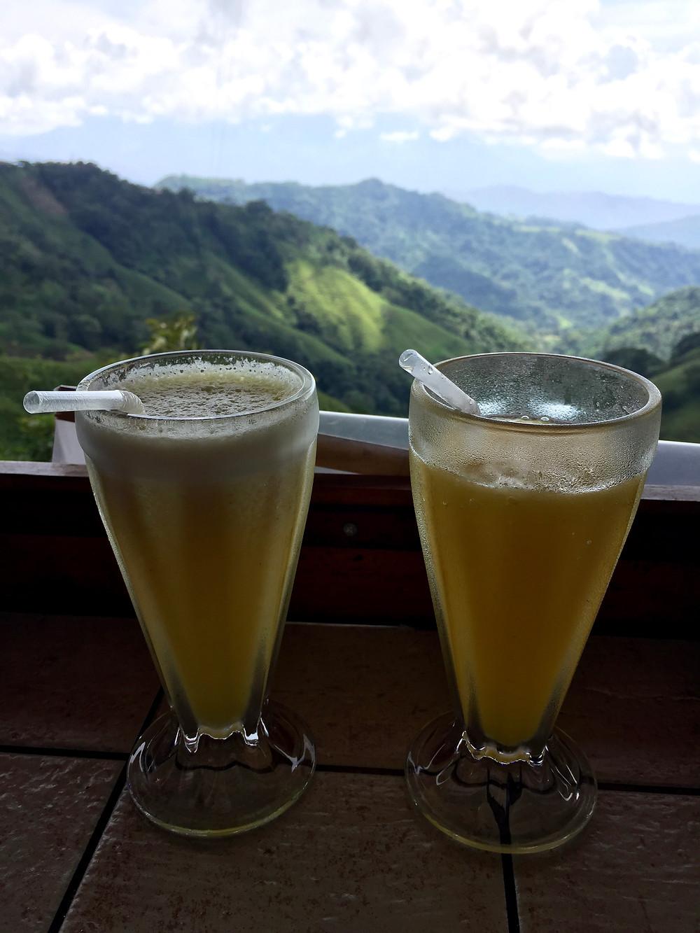 Costa Rica batido