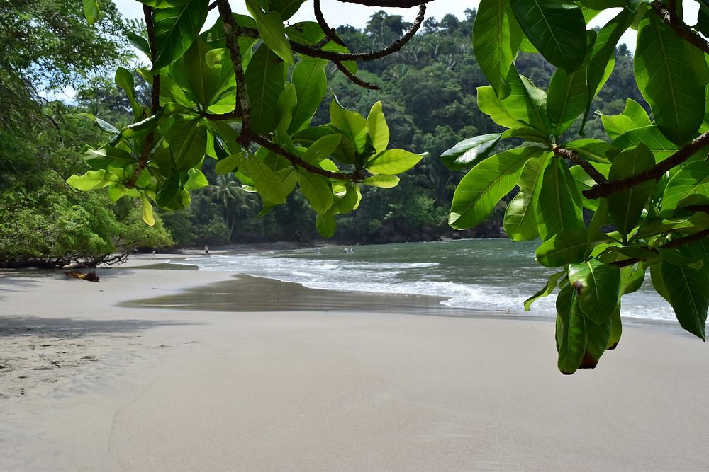 Manuel Antonio National Park beaches