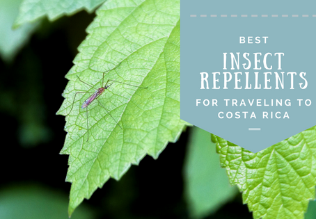 Best mosquito repellents for Costa Rica