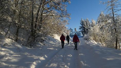 210115 Winterwunderwelt Jungnau 018.JPG