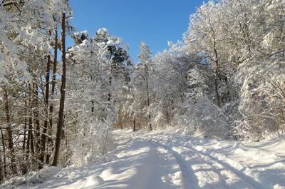 210115 Winterwunderwelt Jungnau 012.JPG